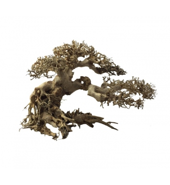 ADA BONSAI WOOD LARGE