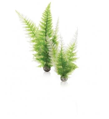 OASE BIORB 2 piante inverno