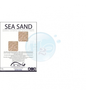sea sand Carmar